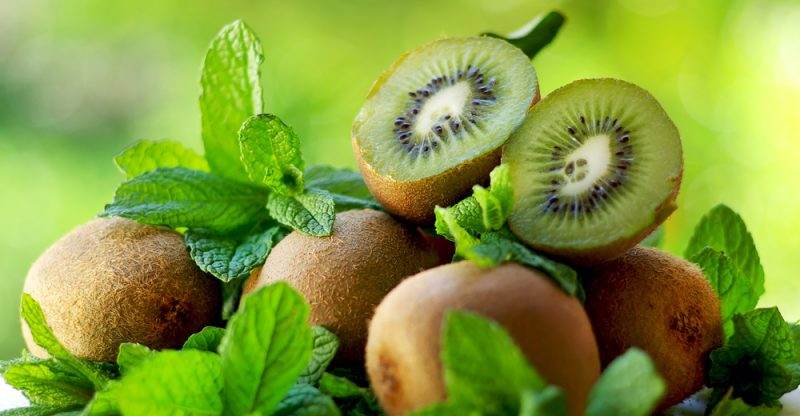 Fresh Kiwi Importers to Germany - ecipek