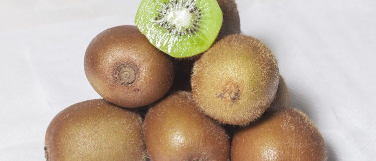 Main Supplier Kiwis