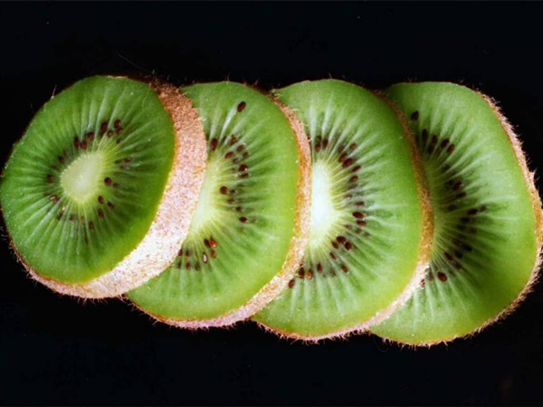 Can You Grow Kiwi Fruit In The UK?